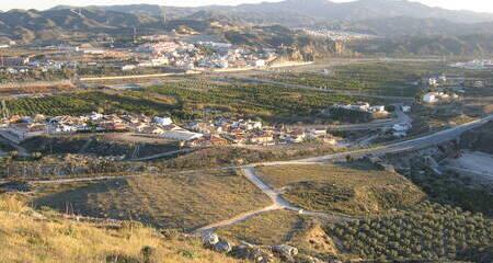 Arboleas